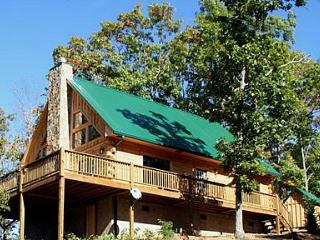 Beauty and Privacy All In One - The Overlook Cabin - Bryson City vacation rentals