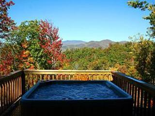 Incredible Mountain Views - The O'Mygosh Cabin - Bryson City vacation rentals