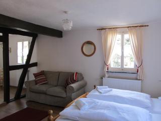 Apartment Dornfelder - Ellenz-Poltersdorf vacation rentals