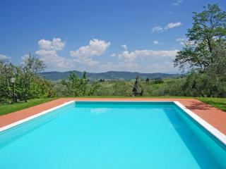 Villa I Leoni Between Florence Sienna and Pisa  - 1 km to village -  Aircond. - Montespertoli vacation rentals