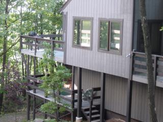 Camelback Mountain Slopeside Home - Tannersville vacation rentals