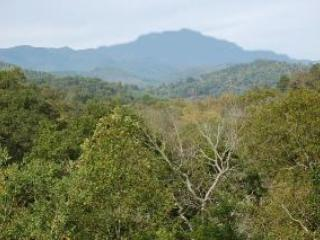 Spectacular Mountain & River View from $495 week - Franklin vacation rentals