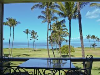 Lanai, Waipuliani Beach Park and Ocean - Leina'ala 305 Two Bedroom Ocean View - Kihei - rentals