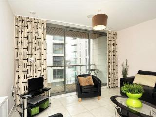 Titanic Quarter Apt, Belfast City Centre,FREE WiFi - Belfast vacation rentals