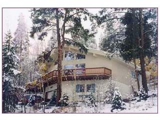 Haus Bergwald  nestled on the side of Peak 7 - Breckenridge vacation rentals