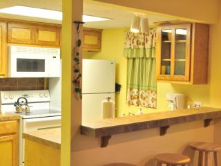 The Sweet - private 1/1 by Zilker, 2 mi to Dwntwn! - Austin vacation rentals