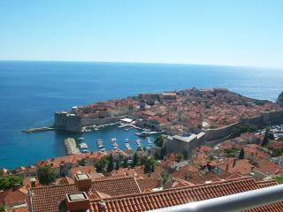 Amazing Apt. Historic views in Great Location (#1) - Dubrovnik vacation rentals