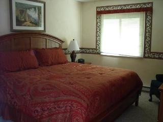3br+ at  Dells Club Condos+ Chula Vista Waterparks - Wisconsin Dells vacation rentals