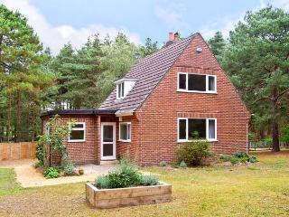 THE CHALET, pet friendly, country holiday cottage, with a garden in Avon Heath - St Leonards vacation rentals