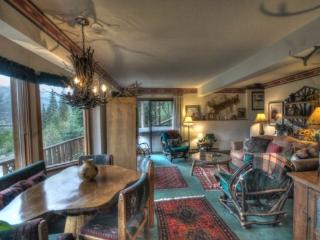 Evergreen Cottage - Steamboat Springs vacation rentals