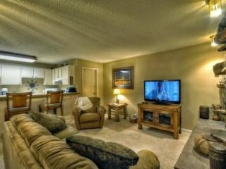 Storm Meadows E23 - Steamboat Springs vacation rentals