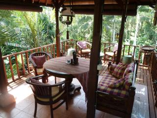 Nice Villa with Deck and A/C - Ubud vacation rentals