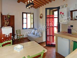 Romantic Riparbella House rental with Deck - Riparbella vacation rentals