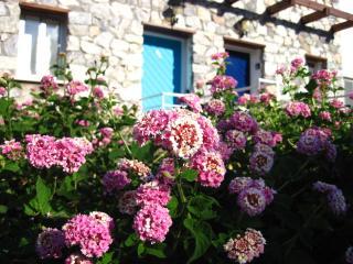 Turkuaz Kapi Apt, Bahceli, Kyrenia, North Cyprus - Akrotiri vacation rentals