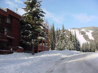 Big Mountain Montana Condo - Whitefish vacation rentals