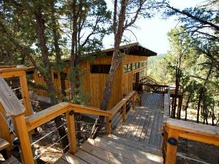 Neeley Mountain House - Rudioso vacation rentals