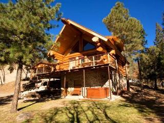 Bear Foot Lodge - Ruidoso vacation rentals