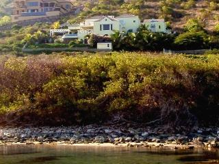 SPECIAL 2 FOR 1  Luxury Villa & Beach Front Lounge - Turtle Beach vacation rentals
