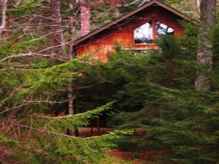 Cristol Cottage - Mount Desert vacation rentals