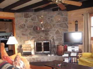 LAKE WALLENPAUPACK W/LAKE VIEW,WOOD F/P,F/PIT,WIFI - Paupack vacation rentals