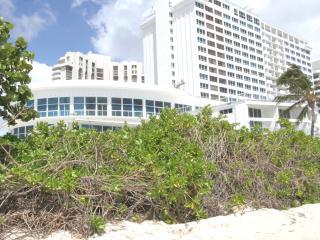 Beachfront Townhouse 4 - Miami Beach vacation rentals
