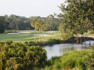 Breathtaking Views from Palmetto Dunes Villa! - Hilton Head vacation rentals