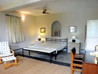 Adorable 7 bedroom Jaipur B&B with Deck - Jaipur vacation rentals