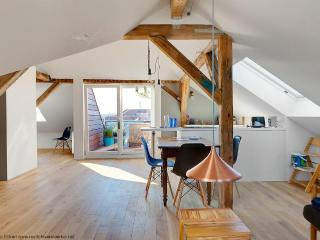 Design Apartment1 with roof terrace in the Centre! - Weimar vacation rentals