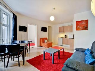 Copenhagen apartment in walking distance to Tivoli - Copenhagen vacation rentals