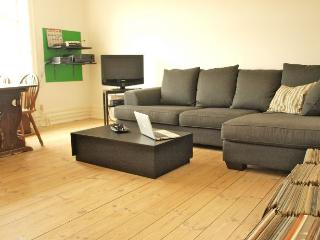 Copenhagen apartment with balcony near Central Station - Copenhagen vacation rentals