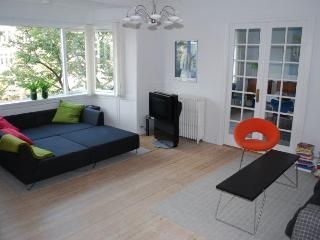 Large Copenhagen apartment close to Forum Metro - Copenhagen vacation rentals