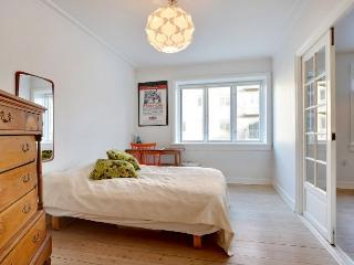 Large Copenhagen apartment with balcony at Noerrebro - Copenhagen vacation rentals