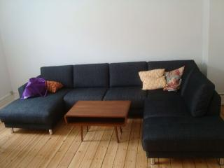 Nice Copenhagen apartment close to Sjaeloer Station - Copenhagen vacation rentals