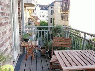 Cosy Copenhagen apartment close to Tivoli - Copenhagen vacation rentals