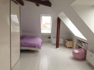 Large and family friendly Copenhagen apartment - Copenhagen vacation rentals