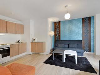 Modern apartment close to Copenhagen Central Station - Denmark vacation rentals