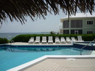 """A Mid-Winter Night's Dream"" - Direct Oceanfront!! - Grand Cayman vacation rentals"