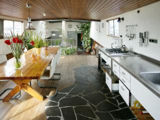 Grand Houseboat Apartment with fire place - Amsterdam vacation rentals