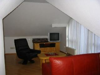 Vacation Apartment in Bad Urach - 387 sqft, nice, clean (# 510) - Blaubeuren vacation rentals