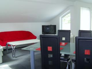 Vacation Apartment in Reutlingen - 753 sqft, modern furnishing (# 541) - Herrenberg vacation rentals