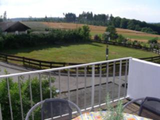 Vacation Apartment in Pfalzfeld - 861 sqft, three balconies, recently renovated (# 1614) - Pfalzfeld vacation rentals