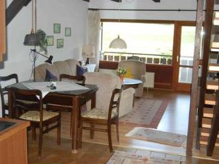 Vacation Apartment in Bodenfelde - nice lawn, right on the river, free WIFI (# 1382) - Hesse vacation rentals
