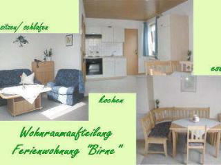 Vacation Apartment in Fuchsmühl - 619 sqft, nice location, affordable, surrounded by nature (# 59) - Wolframs-Eschenbach vacation rentals