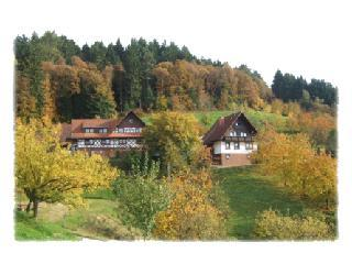 Vacation Apartment in Seebach (Baden) - 538 sqft, relaxing, comfortable, spacious (# 1778) #1778 - Vacation Apartment in Seebach (Baden) - 538 sqft, relaxing, comfortable, spacious (# 1778) - Seebach - rentals