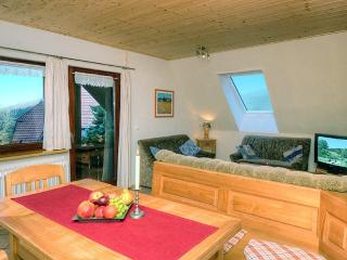 LLAG Luxury Vacation Apartment in Oberharmersbach - 807 sqft, farm setting, games and books available… - Black Forest vacation rentals