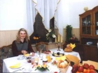 Guesthouse in Reichenbach im Vogtland - comfortable, central, affordable (# 1717) - Reichenbach vacation rentals