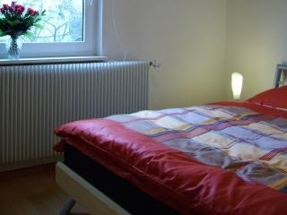 Vacation Apartment in Bad Kissingen - 59901 sqft, central location, fully furnished (# 354) - Bad Kissingen vacation rentals