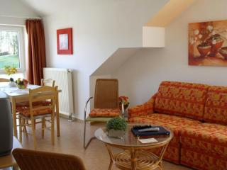 LLAG Luxury Vacation Apartment in Schwedelbach - 603 sqft, great surroundings, ample parking space,… - Rhineland-Palatinate vacation rentals