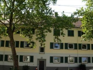 Vacation Apartment in Heidelberg - 667 sqft, convenient, fully furnished, bright (# 461) - Heidelberg vacation rentals