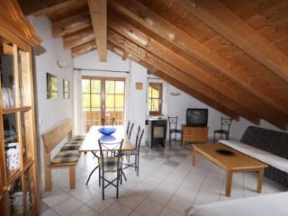 Vacation Apartment in Garmisch-Partenkirchen - 979 sqft, nice, clean, relaxing (# 882) - Garmisch-Partenkirchen vacation rentals